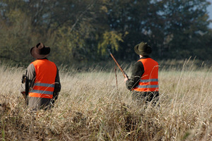 Ways to Prevent Overhunting | The Hunt